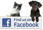 SQ Rescue on Facebook